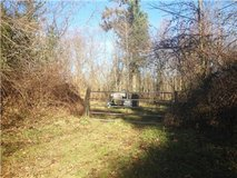50 Acres! Secluded Land for Sale! Lybecker Ln in Fort Lewis, Washington