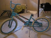 Girls Bike in Algonquin, Illinois