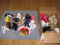 Retired Beanie Babies (Lot of 44) in Vista, California