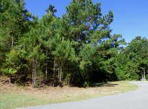 REDUCED $20,000! Beautiful Lot in Emerald Isle with Owner Financing in Cherry Point, North Carolina