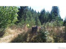 Great for camping and weekend fun! 133rd in Fort Lewis, Washington
