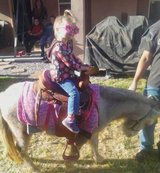 Pony Rides & Petting Zoo in Fort Bliss, Texas