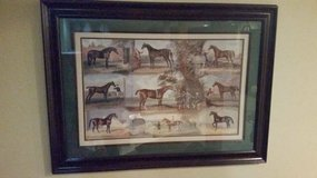 "Picture Print - Horse Picture - Matted and Framed - 24"" x 36"" in Bolingbrook, Illinois"