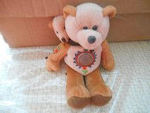LIMITED TREASURES COLLECTIBLE PLUSH  BEANIE BEAR - SACAGAWEA WITH HER PAPOOSE in Houston, Texas