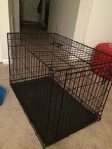 XX-Large Kennel in Fort Benning, Georgia