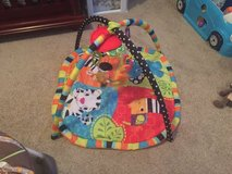 Infant Play Mat in Clarksville, Tennessee