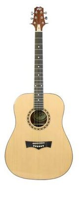 Brand New Peavey DW Acoustic Electric guitar in Camp Pendleton, California