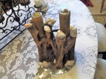Driftwood and seashell  Candleholder Centerpiece in Las Cruces, New Mexico