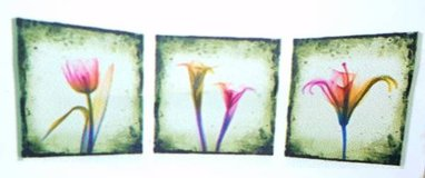 See-through Flowers 3 Piece Photographic Print on Canvas Set in Tomball, Texas