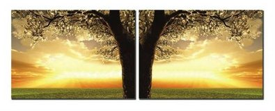Great Tree 3 Piece Photographic Print on Canvas Set in Tomball, Texas