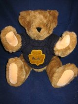 VERMONT TEDDY BEARS (15) Different including Notre Dame in Aurora, Illinois
