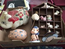 Pig Collection in Tinley Park, Illinois