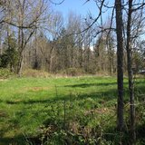 Build your Dream Home on this Gorgeous Lot! Wildai in Fort Lewis, Washington