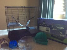 All living things rat starter kit in Joliet, Illinois