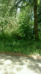 Build Your Dream Home on Shy 1 Acre Parcel!Yelm H in Fort Lewis, Washington