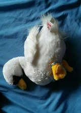 WEBKINZ SWAN in Melbourne, Florida