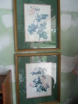 Pair 'Cabbage Rose' Framed Pictures in Naperville, Illinois