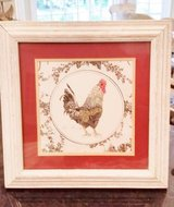 Rooster / Hen Picture in Orland Park, Illinois