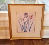 Picture - Botanical Print with Mat in Orland Park, Illinois