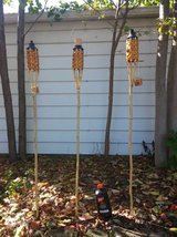 Tiki torches in Cleveland, Ohio