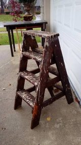 Small Step Ladder in Bolingbrook, Illinois