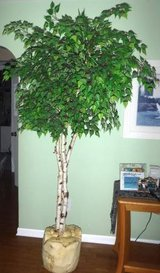 7' ft Artificial Tree - Home Decor in Lockport, Illinois