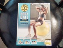 Exercise Body Ball, 2 floor mats, Zumba weights in Jacksonville, Florida