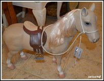 TOY HORSE in The Woodlands, Texas