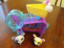 Littlest Pet Shop LPS Lot Sweetie Mouse House Cheese & Cutie Cat Tree House 3 Pets in Macon, Georgia
