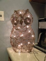 Light Up owl yard decor in Bolling AFB, DC