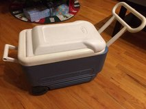 Igloo rolling cooler in Chicago, Illinois