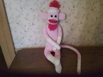 Pink Sock Monkey in Elgin, Illinois