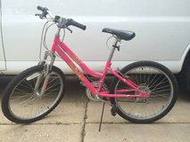 "Pacific 20"" Girls Evolution Mountain Bike in Batavia, Illinois"