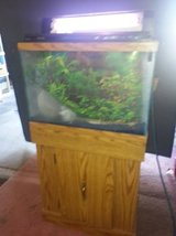 20 gal Aquarium, base, light,cover, and decorations in Aurora, Illinois