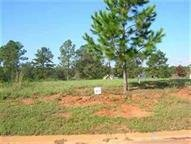 171641- Building Lot in Southern Hills Plantation. in Byron, Georgia
