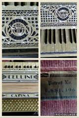 Carina Accordion in Joliet, Illinois