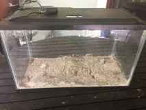 10 gallon glass aquarium with led light hood in Beaufort, South Carolina