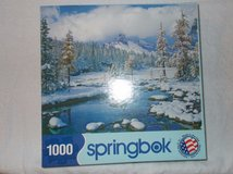 springbok 1000 piece puzzle winter paradise in Fort Campbell, Kentucky