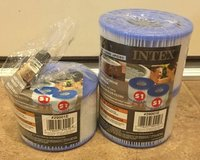 intex s1 replacement filters, set of 3, intex purespa in Kingwood, Texas
