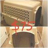Large dog kennel in Bellaire, Texas