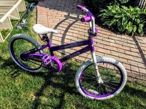 "Girl's 20"" bicycle - Dream Girl in Glendale Heights, Illinois"