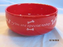 "waechtersbach spain small dog food/water dish ""you are special"" in Naperville, Illinois"