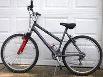 Raleigh M30 Mountain Bike - Gray 21 speed Bicycle in Naperville, Illinois