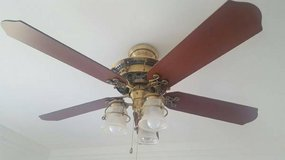 *Beautiful* Hunter 52 inch ceiling fan with light kit. in Naperville, Illinois