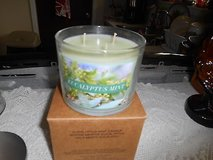 New Eucalyptus Mint 3 Wick Jar Scented Candle!  NEW IN BOX    Smells great!  Brand new in origin... in Bellaire, Texas