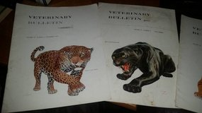 Amazing Artwork - 1950s Veterinary Journals (4) in Travis AFB, California