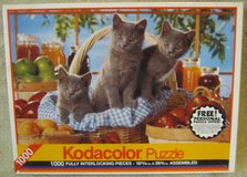 1000 Piece Jigsaw Puzzle with Kittens in Elgin, Illinois