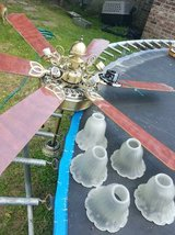 NICE ceiling fan---Excellent condition in Baytown, Texas
