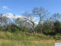 Almost 3 Acres! Bring your goats! in Rosenberg, Texas