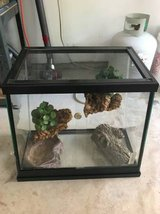 Reptile Lizard Tank With Screen Top in Westmont, Illinois
